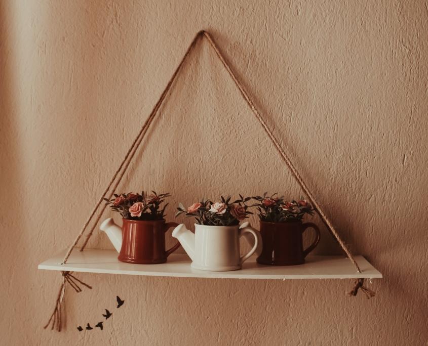 plantjes tegen muur met pasteltint