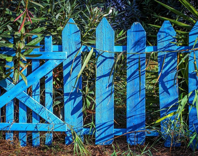 kleur in tuin met blauw tuinhekje